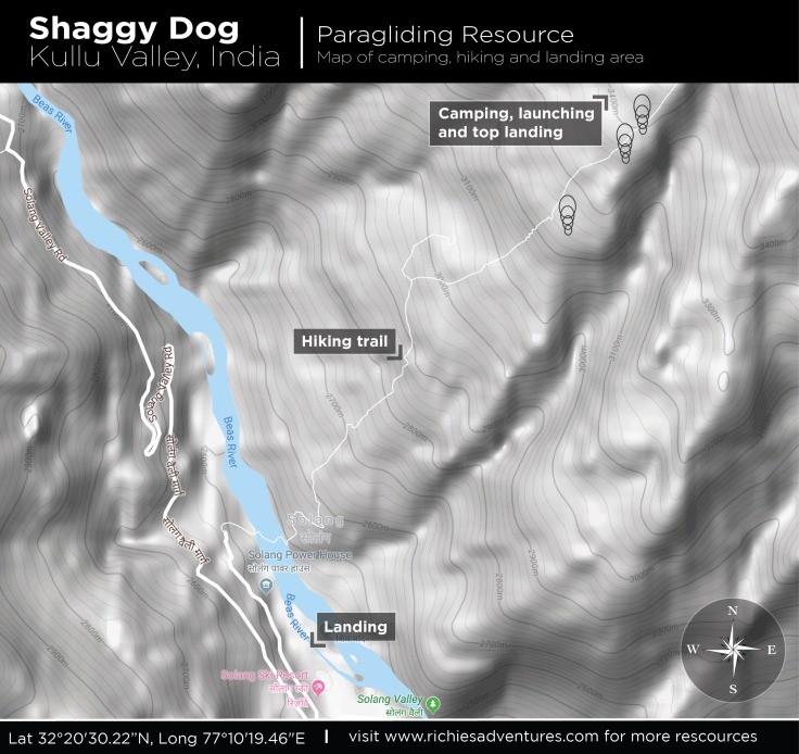 shaggy_dog_how_to_2-01